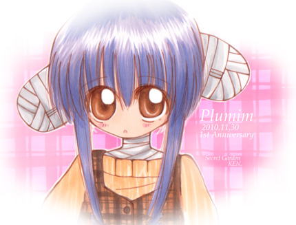 plumim-1st.jpg